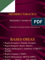 005 2012 AV2 Miologia Cab Cue Tronco