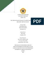 Laporan Praktikum Anatomi Tumbuhan III