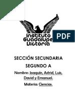 297557090-proyecto-gatos-hidraulicos-docx.docx