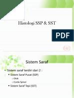 Histologi SSP & SST Ica