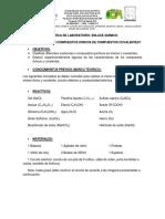 Practica de laboratorio enlace químico..docx