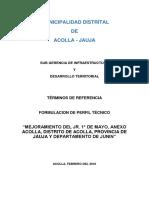 TDR- ACOLLA 1° DE MAYO 2018.docx