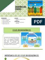 CICLOS-BIOGEOQUÍMICOS.pptx