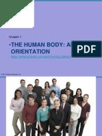 Ch1 the Human Body an Orientation