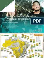 BaciasSedimentaresCPSA.pdf