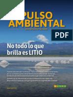 REVISTAPULSO_N10_LITIO-web.pdf
