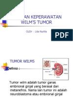 Askep Pd Klien Wilms Tumor