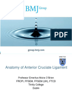 Anatomy of Anterior Cruciate Ligament BMJ
