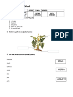 PRUEBA DE CIENCIAS NATURALES TERCERO II.docx