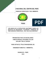 Navarro Ayllón - Trillo Tapiaza.pdf
