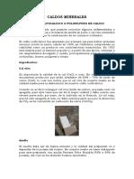 Manual Caldos Minerales