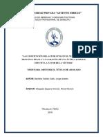 ACTOR CIVIL PROCESAL NCPP.pdf