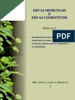Ervas Medicinais e Ervas Comestíveis (Modulo 2)