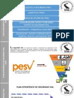 Socialización Del Pesv -Politicas de Seguridad Vial