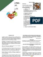 Charla Pre-Bautismal completo.doc
