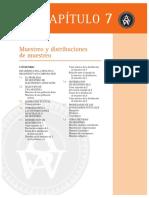 ASW2011-Cap.7.pdf