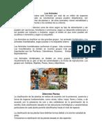 Los Animales.docx
