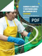 PDF BAnano.pdf