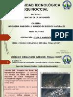 6. Codigo Orgánico Integral Penal (COIP) (1)