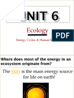 7 - ecology energy and cycles - weebly