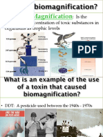 12 - biodiversity biomagnification - weebly