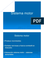 margulis_sistemamotor