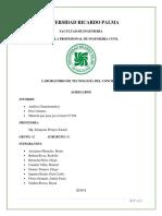 INFORME COMPLETO.docx