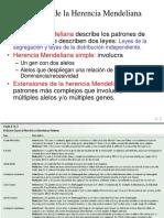 Extensiones Del Mendelismo