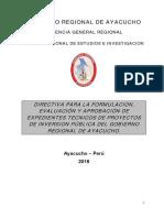 1 DIRECTIVA ELAB. EXP.pdf
