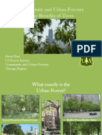 Drew's Community and Urban Forestry Powerpoint for Treekeepers