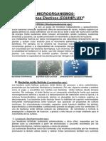 Microorganismos Efectivos Equinplux Usos y Aplicaciones