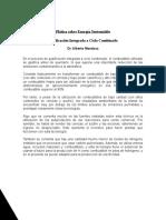 Gasificación integrada a ciclo combinado