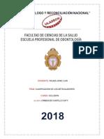 ARTICULADORESSSSSSSSSSS.pdf
