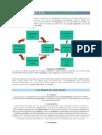 Définition cycle de l'azote.docx
