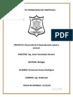 INSTITUTO TECNOLOGICO SUPERIOR DE TANTOYUCA