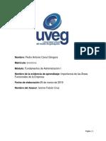 Pedro Antonio Canul Góngora_Importancia de Las Áreas Funcionales