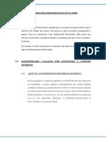 Enfermedades Profesionales en El Peru
