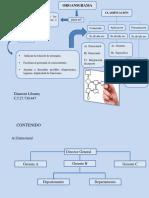 fundamentos ( organigrama).pptx