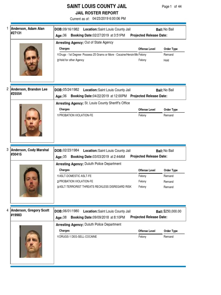 Jail Roster Report: Charges 1 2 Offense Level Order Type