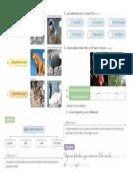 ciencias plantas y animal.doc