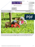 Fair Trade_ Um Bom Exemplo de Comércio Justo