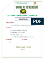 ENERGIA EOLICA-MONOGRAFIA.docx