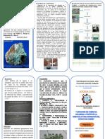 OK TRIPTICO  LIXIVIACION-LISTO copia.docx