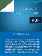 PENGANTAR MIKROORGANISME