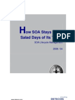 Detecon Opinion Paper How SOA Stays in the Salad Days of Its Youth