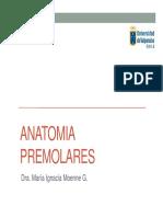 ANATOMIA PREMOLARES.pdf