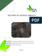 RCA_ Neto