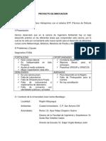 PROYECTO DE INNOVACION.docx