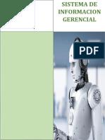 SISTEMA DE INFORMACION GERENCIAL.docx