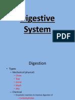 Digestive System PPT.ppt